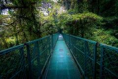 Dschungelbrücke Stockfotografie