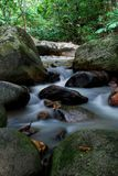 Dschungelfluß lizenzfreie stockfotografie