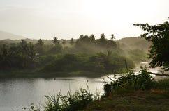 Dschungelfluß in Karibischen Meeren Stockbild
