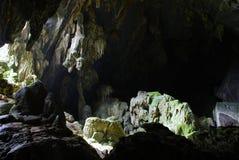 Dschungelhöhle Stockbild