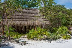 Dschungelhütte Stockbilder