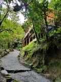 Dschungelhütte Stockbild