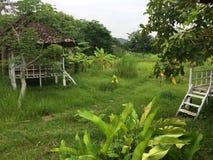 Dschungelhütten in tropischem Thailand lizenzfreie stockbilder