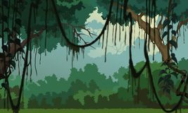 Dschungelhintergrund - angenehme Landschaft Lizenzfreie Abbildung