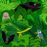 Dschungelhintergrund Regenwald des nahtlosen Vektors tropischer Lizenzfreies Stockbild