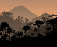 Dschungelhintergrund Regenwald des Vektors tropischer Stockfoto