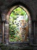 Dschungelkommunikationsrechner Stockfoto