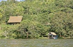 Dschungelrückzug Stockbilder