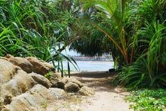 Dschungelstrandansicht von Sri Lanka Stockfoto