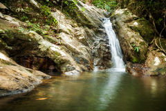 Dschungeltrekking auf Koh Phangan Lizenzfreies Stockbild