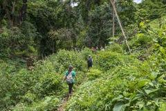Dschungelwanderung Luang Prabang, Laos lizenzfreie stockfotografie