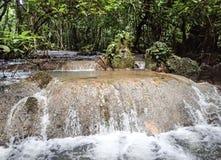 Dschungelwasserfall Lizenzfreie Stockbilder