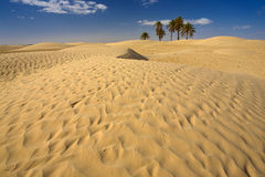 désert Image stock