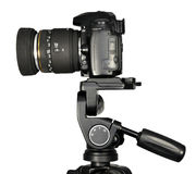 Dslr camera. On a tripod Royalty Free Stock Images