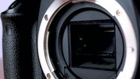 DSLR camera stock video footage
