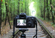 DSLR Camera on railway in forest Royalty Free Stock Photography