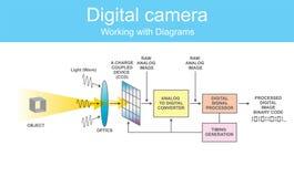Dslr digital del diagrama ilustración del vector