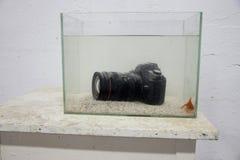 Dslr digital kamera som doppas i ett akvarium Royaltyfria Bilder
