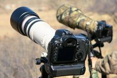 DSLR e lente de Telephoto imagens de stock royalty free
