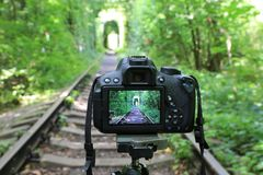 DSLR-kamera på järnväg i skog arkivfoton