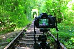 DSLR-kamera på järnväg i skog arkivbild