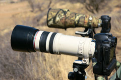 DSLR and Telephoto lens Stock Photography
