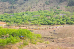 DT104 carretera, Moc Chau, Son La Imagen de archivo libre de regalías
