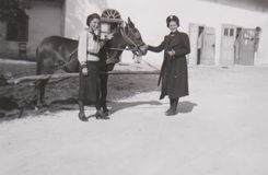 DT00013 HUNGARY BALATON CA 1939 - Young Ladies and A Horse - The Best Friends stock photos
