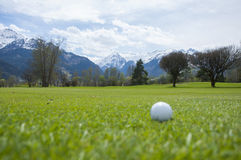 Détail de boule de golf sur l'herbe Photographie stock