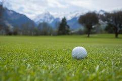 Détail de boule de golf sur l'herbe Image libre de droits
