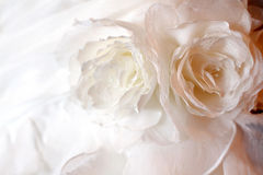 Détail de robe de mariage Image libre de droits