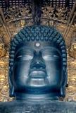 Duży Buddha, Nara, Japonia obrazy royalty free
