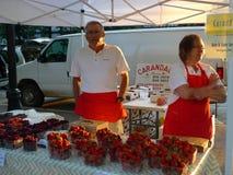 Duńczyka okręgu administracyjnego rolników rynek w Madison Wisconsin Zdjęcie Royalty Free