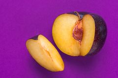 Duża dojrzała organicznie purpurowa śliwka z cięciem za segmentu klinie na żywym ultrafioletowym tle Żółta ciało jama zamknięta w zdjęcie royalty free