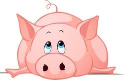 Duża gruba świnia kłaść puszek - wektorowa ilustracja Fotografia Stock