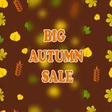 Duża jesieni sprzedaż Fotografia Royalty Free