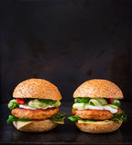Duża kanapka - hamburger z soczystym kurczaka hamburgerem fotografia stock