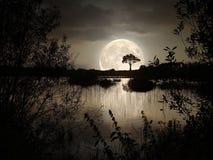 Duża księżyc Zdjęcia Royalty Free