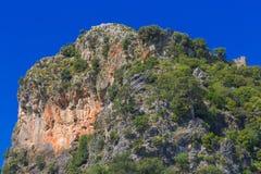 Duża skała z zielonymi krzakami Obraz Stock