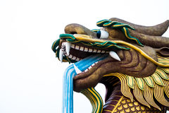 Duża smok statuy głowa na odosobnionym tle, Supanburi, Tajlandia Obrazy Stock