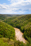 Duża South Fork Krajowa rzeka i Rekreacyjny teren obraz royalty free