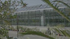 Duża szklarnia z szklanymi ścianami, podstawy, dwuokapowy dach, ogrodowy łóżko zdjęcie wideo