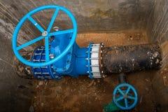Duże błękitne klapy wodna drymba obraz stock