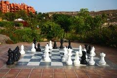 duże chass ogródek uprawiają plenerowego obrazy royalty free