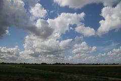 Duże cumulus chmury nad pola Zuidplaspolder w holandiach i łąki fotografia royalty free