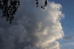 Duże cumulus chmury nad pola Zuidplaspolder w holandiach i łąki obrazy stock