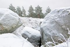 Duże mroźne skały i zieleni mroźni drzewa na tle Zadziwiający zima widok Fotografia Royalty Free