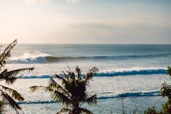 Duże ocean fale w oceanie i kokosowe palmy w zwrotnikach obrazy royalty free
