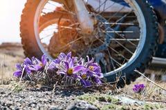 Dużego koła motocykl outdoors Fotografia Royalty Free