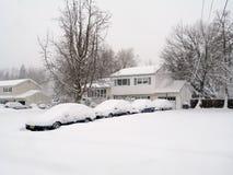 dużo śnieżni Zdjęcia Royalty Free
